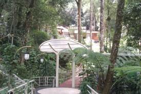 Mansion bertumpuk di hutan
