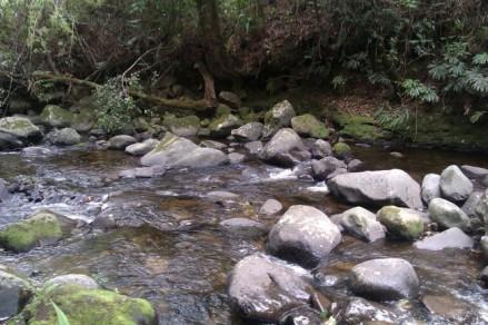 Sungai berbatu