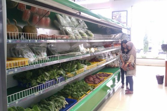 Jual sayuran juga
