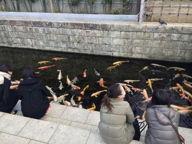Duduk-duduk sambil liat ikan