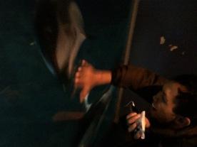 Anak kecil nggak pernah liat lumba-lumba