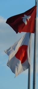 Aichi Flag waving