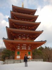 Pagoda Saju (2)