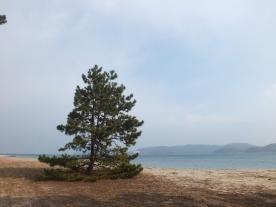 Sisi tengah beting pasir amanohashidate (4)
