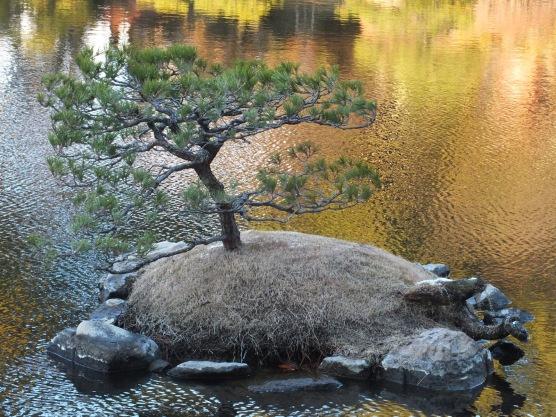 Shukkeien - Pulau Bonsai