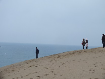 Gurun di tepi pantai