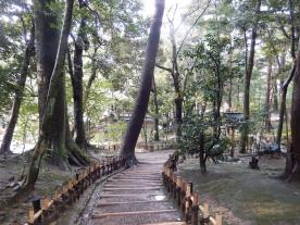 Kenrokuen (3)