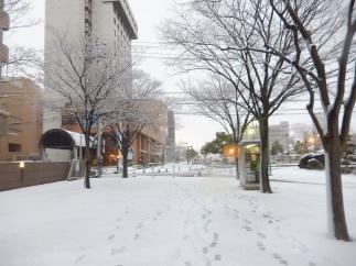 Salju dekat Tottori Station (1)