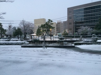 Salju dekat Tottori Station (2)